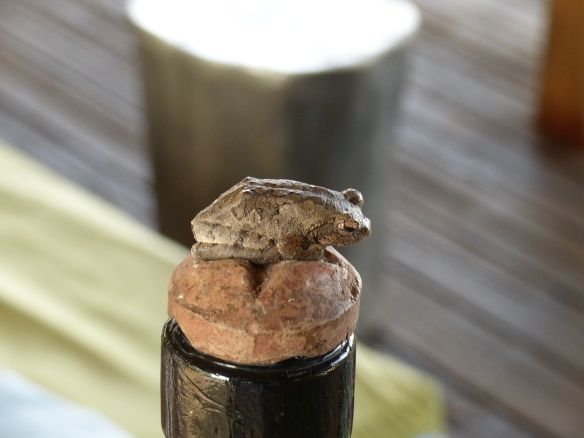 This frog is real. He was perched atop a bottle stopper and I had to look closely to see if he was breathing!