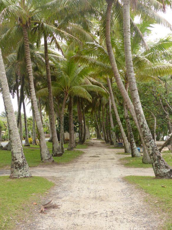 bella-beach-park