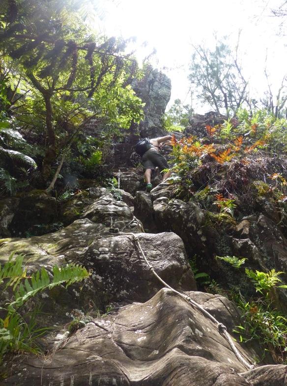 michael-rock-wall-2