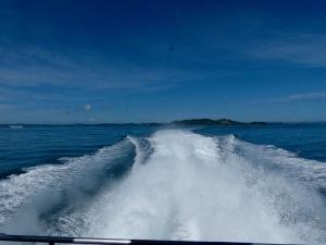 boat-wake