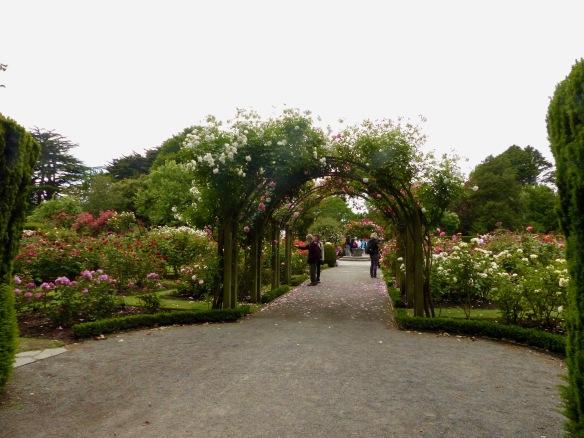 chc-gardens-1