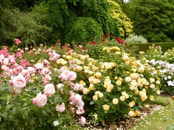 chc-gardens-10