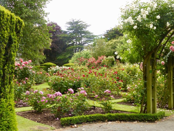 chc-gardens-2